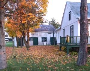 À l'arrière-plan, le vieux hangar où autrefois on ferrait les chevaux...