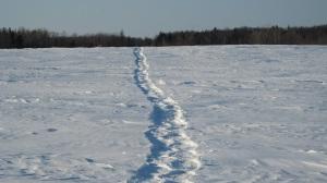 hiver-2008-046