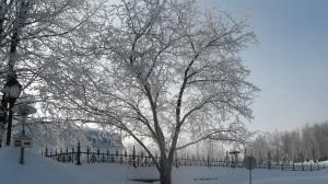 hiver-2008-059