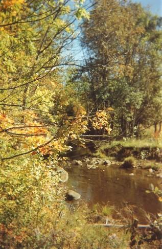 rivière automne
